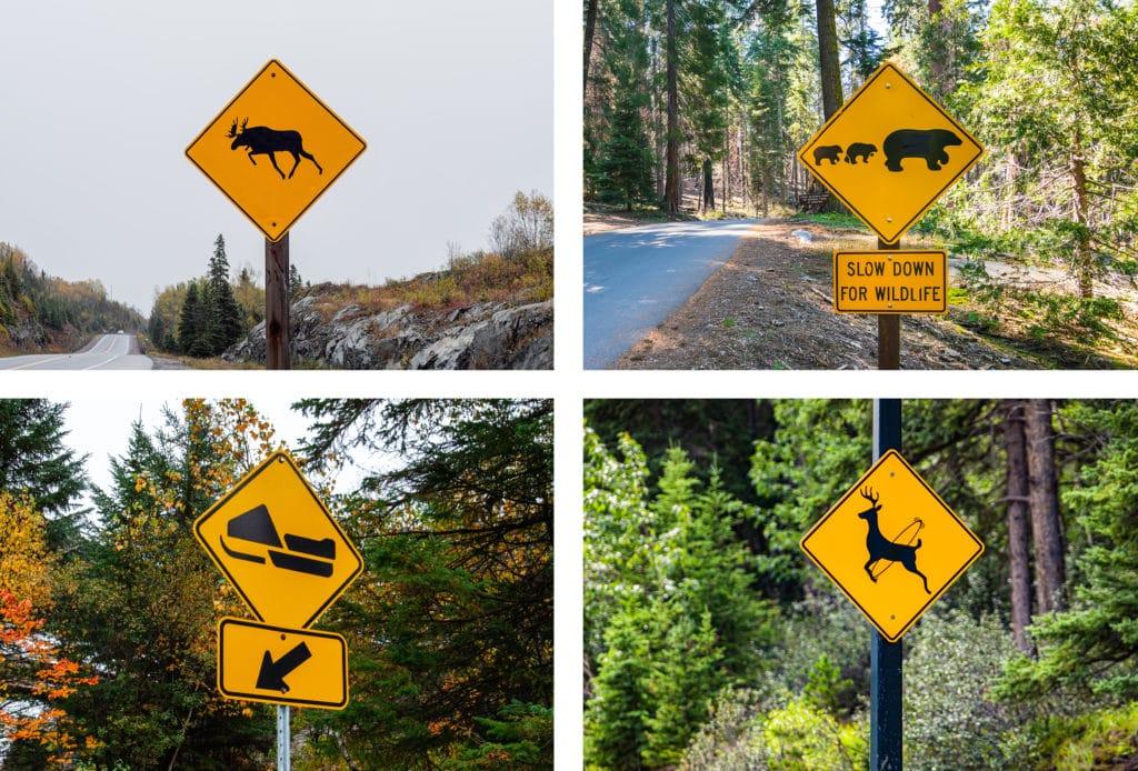 panneaux canadiens surprenants